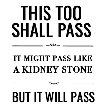 Kidney Stones Meme - 3702 best quotes fun images on pinterest thoughts truths and