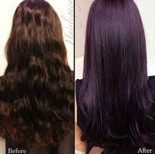 long hairstyles 2015 colours 25 dark purple hair color long hairstyles 2015 makeup ideas