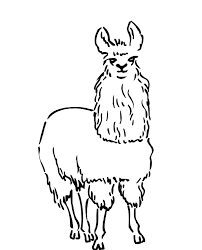 print coloring pages animal llama free animal coloring pages of