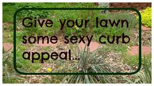 get rid of your lawn our front yard garden design youtube