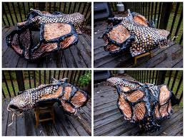 koi fish butterfly by jackieducrostudio on deviantart