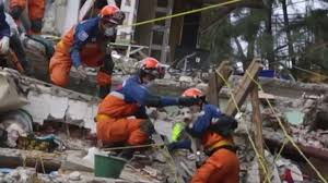 afghan hound vs wolfhound dog saved from rubble six days after earthquake in mexico