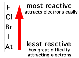 Most Reactive Metals On The Periodic Table Which Is The Most Active Element In The Periodic Table Updated 2017