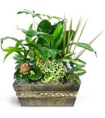 wedding flowers kitchener funeral sympathy flowers kw flowers kitchener on florist