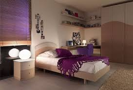 Guy Bedroom Decor - Bedroom paint color design