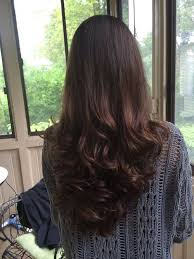 back views of long layer styles for medium length hair dark long layered haircut back view hair from behind pinterest
