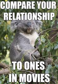 Bad Relationship Memes - bad relationship advice koala above average