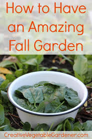 352 best growing images on pinterest garden tips gardening and