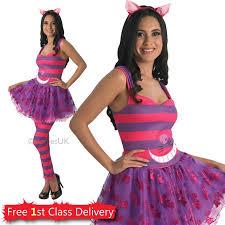 best 25 cat fancy dress ideas on pinterest cat lion costume