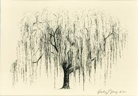 loving this paint me a weeping willow