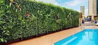 Vertical Garden Adalah - vertical garden jakarta jasa pemasangan taman dinding salema