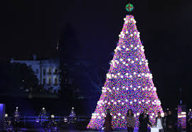 the national christmas tree will stop in denver on way to d c
