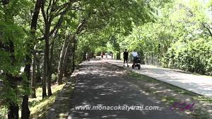 Katy Trail Dallas Map by Monaco On The Trail Monaco Katy Trail Dallas Tx Apartments Zrs