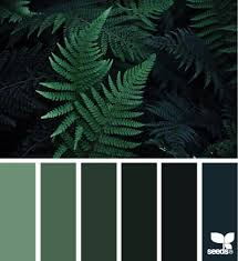 best 25 nature color palette ideas on pinterest seeds color