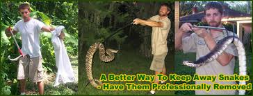 How To Keep Pests Away From Garden - how to keep snakes away from the house