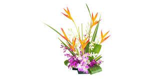 Flowers Of The Month Flowers Of The Month With Our Aloha