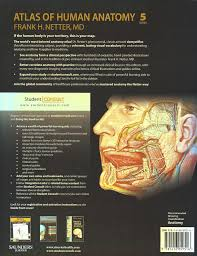 Netter Atlas Of Human Anatomy Online Reference U2014 Based Pt