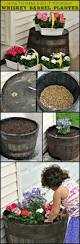 best 25 whiskey barrel planter ideas on pinterest container