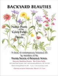 fl native plants florida society of botanical artists exhibition the art of mindy
