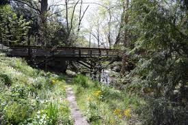 asheville nc u2013 asheville botanical gardens ranger annette