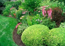Shrub Garden Ideas Front Yard Beautiful Front Landscape Bushes Image Inspirations