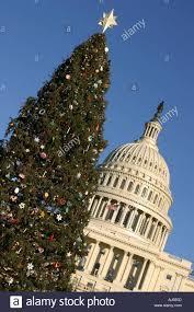 washington dc national christmas tree christmas lights decoration
