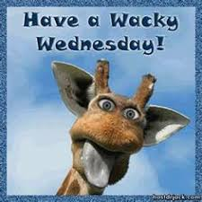 Wednesday Funny Meme - make meme with funny wednesday clipart