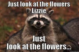 Look At The Flowers Meme - just look at the flowers lizzie quickmeme