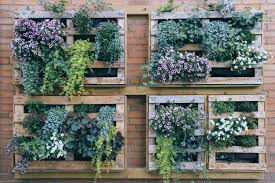 a vertical garden on a wall top 21 the most easiest diy vertical