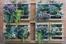 vertical gardens diy vertical garden ideas for your home