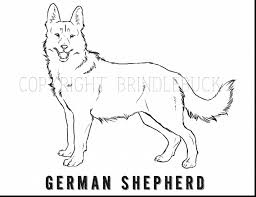 good german shepherd dog coloring page child art with german