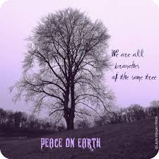 tree quotes sayings pictures images