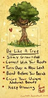 tree quotes about 65517 quote addicts