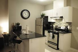 new luxurious basement apartment apartments for rent in brampton