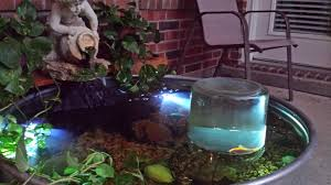not an aquarium but a few people asked about my pond when i