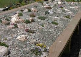 Japanese Rock Garden Plants Small Rock Garden Plants Marvellous Japanese Rock Garden Designs