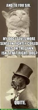 Benson Dog Meme - benson meme dog meme best of the funny meme