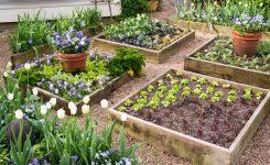 garden border ideas 1000 ideas about garden edging on pinterest