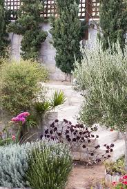 native plants in landscape management 10 garden ideas to steal from greece crete greece drought