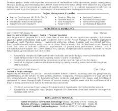 senior project manager resume format u2013 inssite