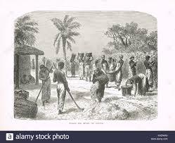 black slaves america stock photos u0026 black slaves america stock