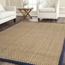 Living Room Rugs 10 X 12 Amazon Com Safavieh Natural Fiber Collection Nf114e Basketweave