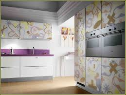 Kitchen Cabinet Doors With Glass Fronts by Replacement Kitchen Cabinet Doors With Glass Home Design Ideas