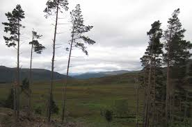 a day in drumnadrochit home of the loch ness monster walk ten