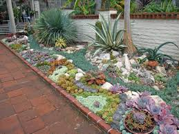 Succulent Gardens Ideas Reader Photos A Gem Of A Succulent Garden Finegardening