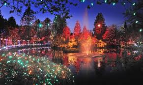 Vandusen Botanical Garden Lights Sparkle At Vandusen Gardens