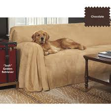 Dog Sofa Cover by Best 20 Pet Couch Cover Ideas On Pinterest Pet Sofa Cover