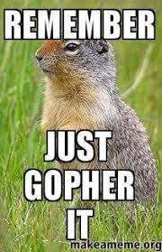 Gopher Meme - remember just gopher it make a meme