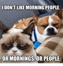 Morning People Meme - don t like morning people or morningsor people meme on esmemes com
