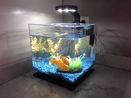 fish tank home aquarium pinterest tanked aquariums fish